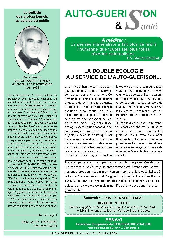 Auto-guérison n°2 - Année 2003